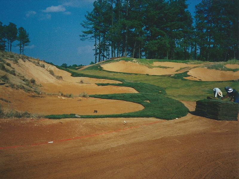 tobacco-road-golf-course-new-sod-during-construction